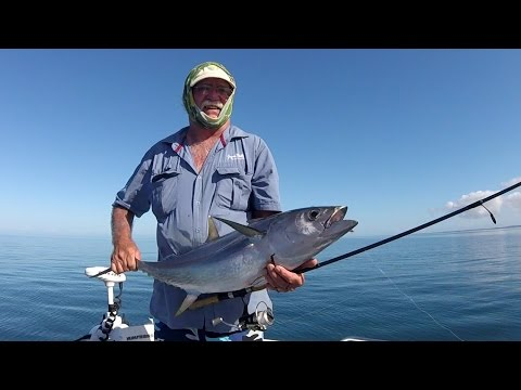 Fish That Snag - Wathumba Creek Overnight - Sharks, Tuna & More