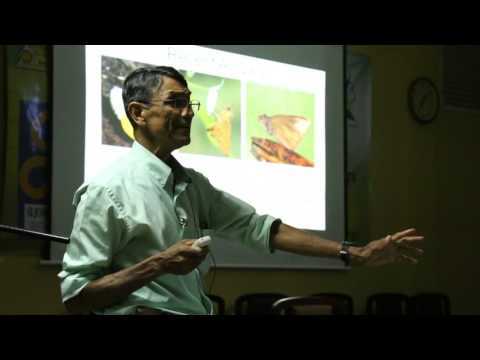 Butterflies of Sri Lanka and their origins  - Dr. George Van Der Poorten - Part - 3