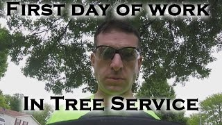 First day of work at the new job in tree service