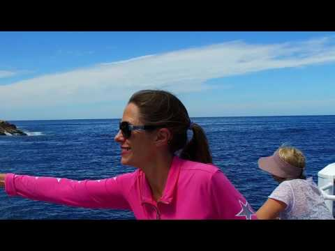 video Maria Island Cruise & Walk Day Tour