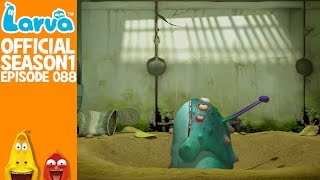 [Official] Quick sand - Larva Season 1 Episode 88