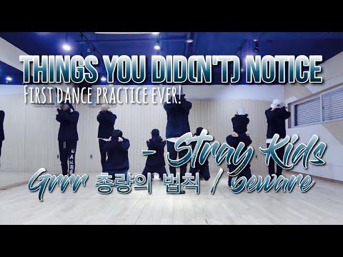 THINGS YOU DID(N'T) NOTICE in Grrr 총량의 법칙/Beware Dance Practice // Stray Kids