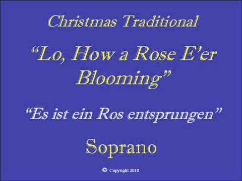 Lo How a Rose   Soprano.wmv