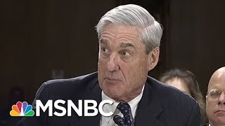 "Robert Mueller Witness: ""A Sphinx-Like Presence"" 