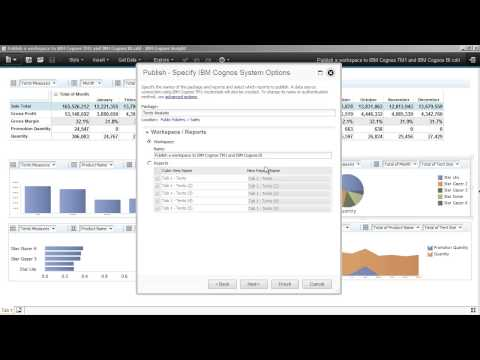 Cognos Insight v10 2  publish a workspace to IBM Cognos TM1 and IBM Cognos BI