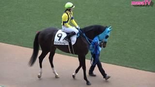 【4K現地撮影】2020年1月12日中山競馬場2Rグッドフェイム&藤田菜七子騎手7着