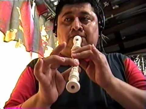 Pájaro Campana en flauta dulce y tutorial
