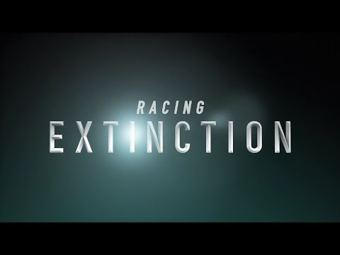 Racing Extinction'