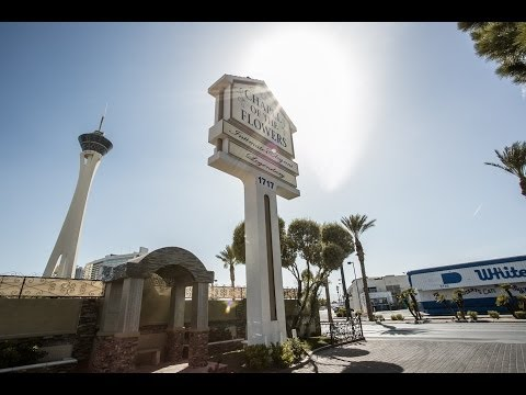 vegas2italy Poker Club Lottomatica ep. 2: Sposarsi a Las Vegas!