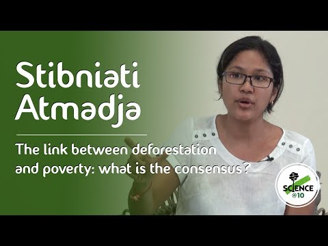 CIFOR's Science@10 – Stibniati Atmadja on links between deforestation and poverty