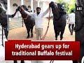Hyderabad gears up for traditional Buffalo festival 'Sadar'