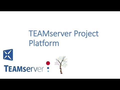 TEAMserver Project Platform