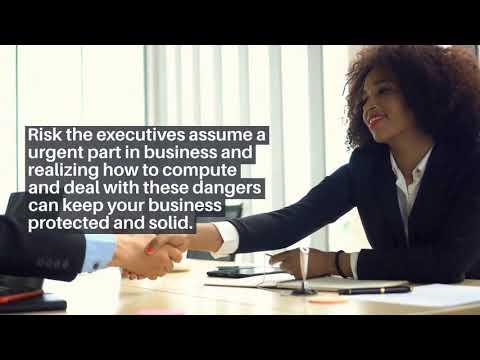 Risk Management in Business- Daniel Pimental