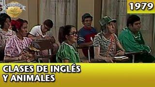 El Chavo | Clases de inglés y animales (Completo)