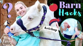 BARN HACKS | Life Hacks Every Equestrian NEEDS to Know! | This Esme