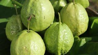 Top 10 loại trái cây đặc biệt tốt cho bệnh nhân tiểu đường