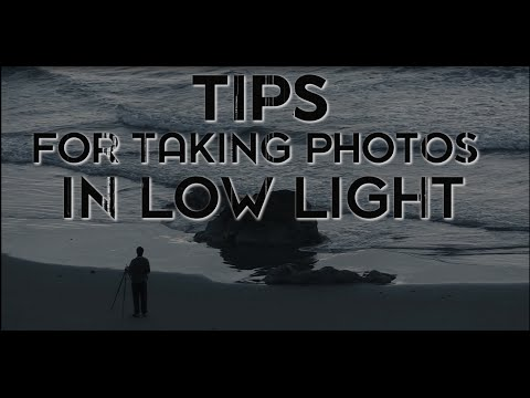 Top Tips for Low Light Shooting