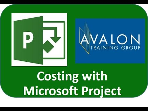 Costing using Microsoft Project 2010 or 2013