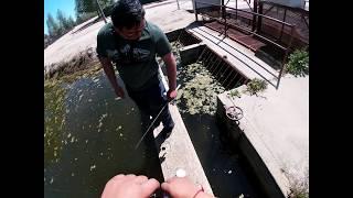 Creek Urban Fishing In Fresno