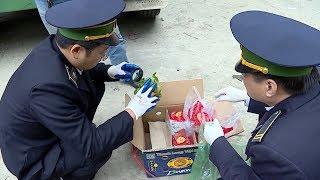 EU tăng cường kiểm tra thanh long Việt Nam