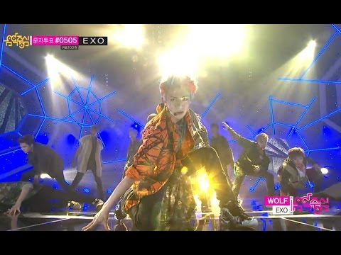 【TVPP】EXO - Wolf, 엑소 - 늑대와 미녀 @ Show! Music Core Live