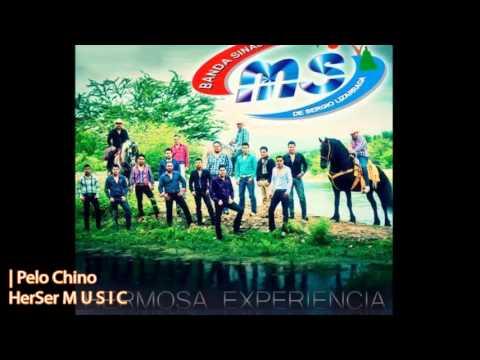 Pelo Chino - Banda MS (CD 10° Aniversario: Hermosa Experiencia / 2013)