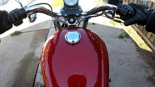 Riding story - Harley sunny, catching sunny in the early winter season