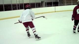 Hilary Knight sick goals and trick shots