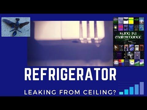 Fridge Leaking Inside Refrigerator Drips From Ceiling