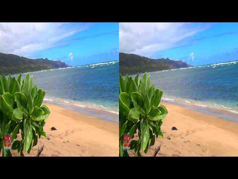 3D Video Beach Hawaii Nature Scene - 3D Video Everyday N°
