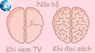 """Hóa ra hoạt động thường ngày cũng khiến não bộ """"phình ra xẹp nhỏ"""" lại như thế này!"""