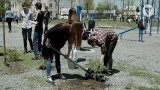 Полторы тысячи деревьев - за неделю. Такое количество молодых побегов высадят в Артеме на неделе.