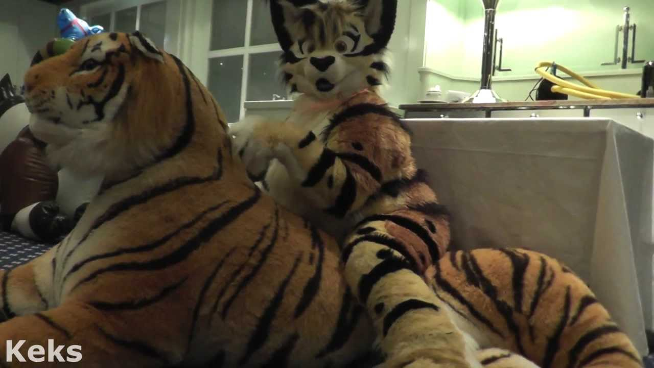 Cute Fursuiter with Inflatable Plush Tiger - YouTube