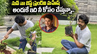 Hero Vijay accepts Mahesh Babu 'Green India' challenge..
