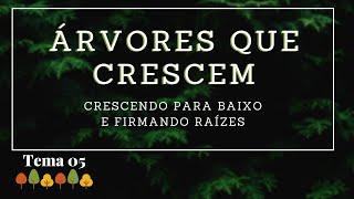 19/04/20 - Árvores que Crescem - Tema 05 - Crescendo para baixo e firmando raízes - Rosana Fonseca