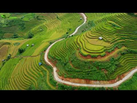 Amazing Rice Terraces in Mu Cang Chai, Yen Bai