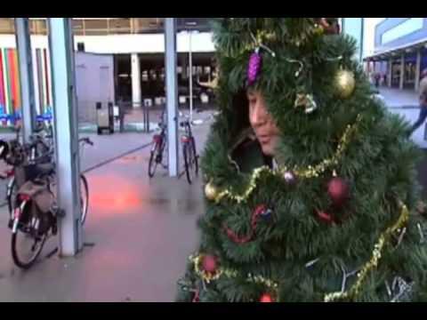 De Levende Kerstboom