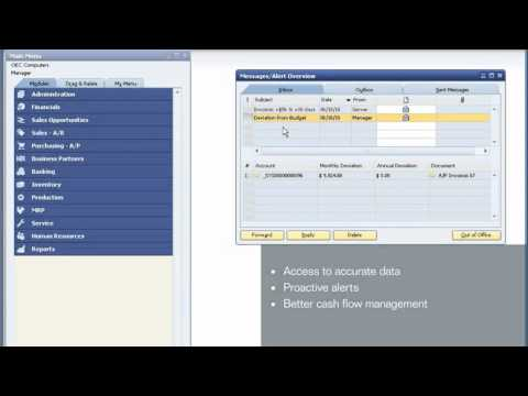 Managing Financials and Accounting with SAP Business One from Simmex