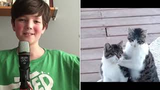 Sadies reacts to funny cat videos