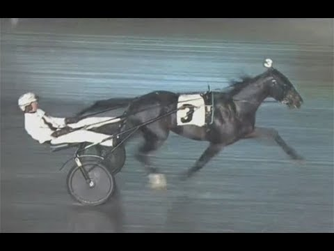 TVG OPEN FINAL at The Meadowlands