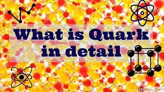 What is quark in detail | T&NW |
