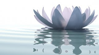 1 hour slow tempo music relax meditate study sleep