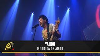 Yahoo - Mordida de Amor - DVD Flashnight