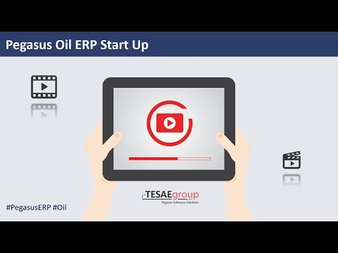 Pegasus Oil ERP Start Up