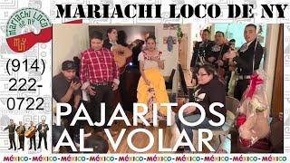 Pajaritos Al Volar - El mejor mariachi de New York - Mariachi Loco de NY (914) 222-0722