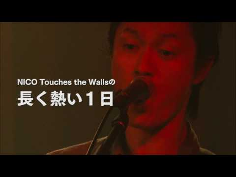 NICO Touches the Walls LIVE SPECIAL 2016