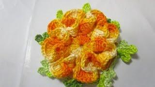 Uncinetto Crochet Tutorial Fiore Sofia Music Videos