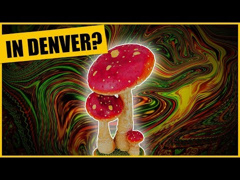 Historic Vote In Denver NOW! Will Magic Mushrooms Be Decriminalized?