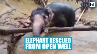 Viral Video: Locals, forest officials rescue elephant stuc..