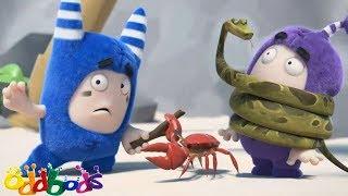 Oddbods Full Episode - Oddbods Full Movie | Marooned | Funny Cartoons For Kids